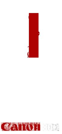 logo Lirolla